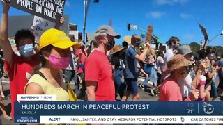 Hundreds march in peaceful protest
