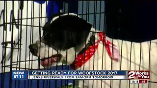 Woofstock 2017 - Video