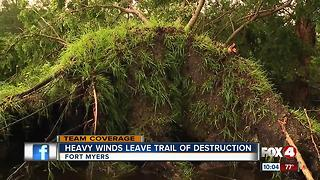 Heavy winds leave trail of destruction, rain leaves yards flooded