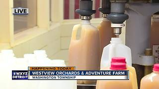 Fun at Wesview Orchards - Video