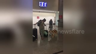 Excited dog greets owner after eight month trip