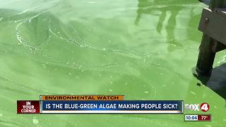 Is the blue-green algae making people sick? - Video