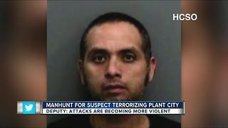 Manhunt for suspect terrorizing Plant City - Video