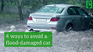 Four ways to avoid buying a flood-damaged car - Video