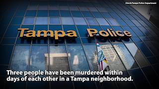 Possible serial killer on loose in Tampa Florida | Rare News - Video