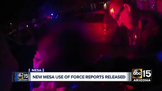 New Mesa police use of force reports released