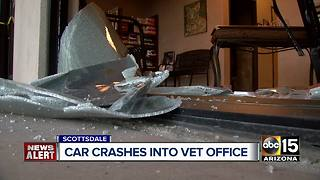 Car crashes into Scottsdale veterinary office - Video