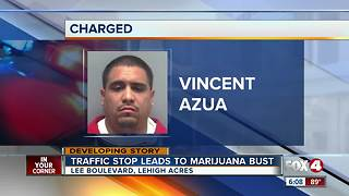 Cape man charged in marijuana bust - Video