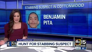 Police are searching for a stabbing suspect in Cottonwood - Video