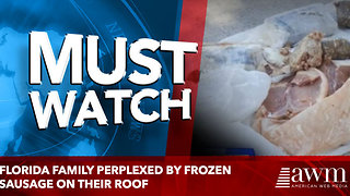 Florida family perplexed by frozen sausage on their roof - Video