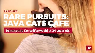 Rare Pursuits: Java Cats Cafe - Video