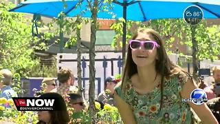 A new pop-up park in Denver has opened for the summer - Video