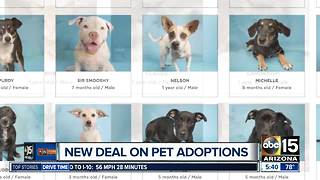 Arizona Humane Society offering 50% off adoptions this Friday and Saturday - Video