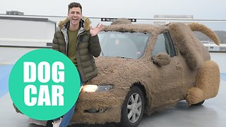 A car salesman turned his girlfriend's car into a DOG - Video