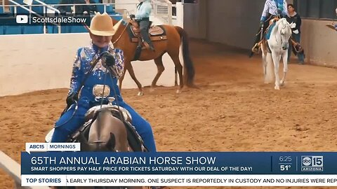 Deal of the Day: Half off admission to the Scottsdale Arabian Horse Show!