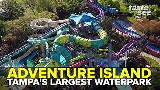 Adventure Island: Tampa Bay's largest waterpark | Taste and See Tampa Bay