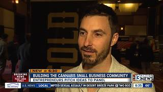 Pot entrepreneurs pitch products to investors