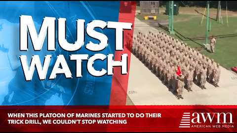 When This Platoon Of Marines Started To Do Their Trick Drill, We Couldn't Stop Watching