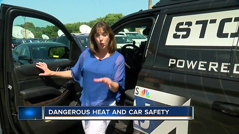Dangerous Heat and Car Safety Tips