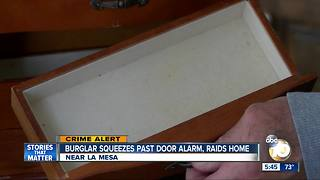 Burglar squeezes through La Mesa doggie door, raids jewels - Video