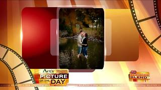 Art's Cameras Plus Picture of the Day for January 2! - Video