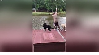 Dogs Watch Owner Fall Into Lake And Are Not Happy About It - Video