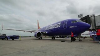 Southwest Airlines CEO takes pay cut to save jobs