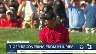 Tiger Woods recovering from injuries after crash