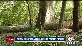 Hundreds of scientists ask Gov. Holcomb to protest forests - Video