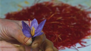 What Makes Saffron So Jaw-Droppingly Expensive?