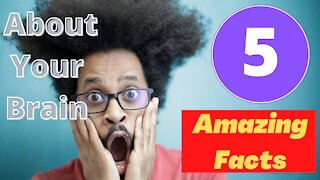 5 Amazing Facts About Your Brain