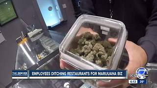 Employees ditching restaurants for marijuana industry - Video
