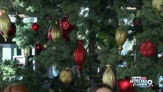Gov. Ducey to light Capitol Christmas tree - Video