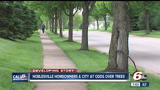 Noblesville community fights to save trees - Video