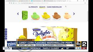 Spooky or sweet? Candy corn Peeps released for Halloween - Video