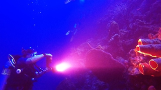 Divers explore mysterious Black Hole dive site - Video