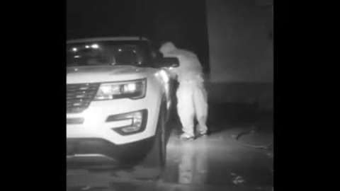 WATCH: Man steals from car
