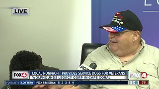 Nonprofit rescues, trains service dogs to pair with U.S. veterans