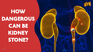 What Causes Kidney Stone?