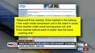 Collier restaurant closed after roaches found - Video
