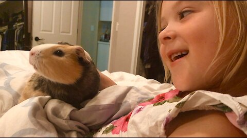 This little girl and her guinea pig will make your day