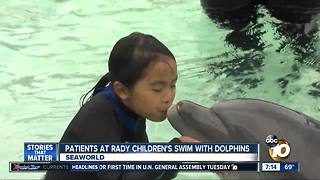 Patients at Rady Children's swim with dolphins - Video