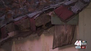 Springhill Valley residents want vacant homes torn down - Video