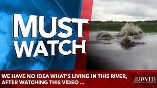 We have no idea what's living in this river, after watching this video ... - Video