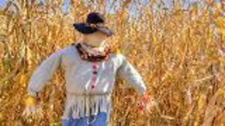 Make A Scarecrow - Video