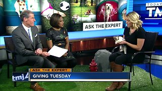 Ask the Expert: Giving Tuesday