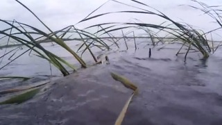 Irma dealt huge blow to Lake Okeechobee - Video