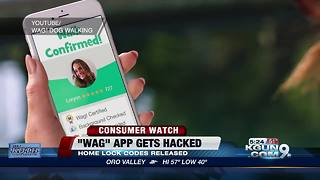 Dog walking app suffers security breach - Video