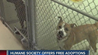 Indy Humane Society offers free adoptions - Video