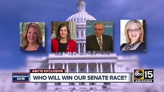 Poll: Arizona Senate race tightening in primaries and general election - Video